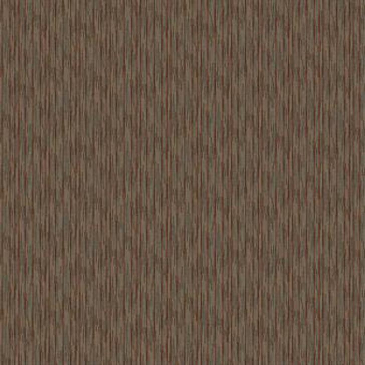 Masland Intensity 9630 Nylon Residential Carpet