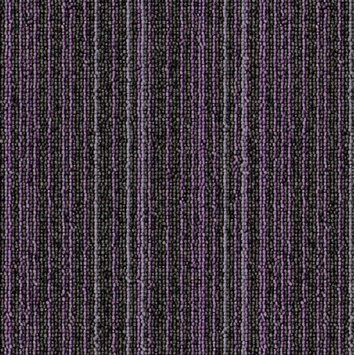 Bella Flooring Group Warp Speed Carpet Tiles