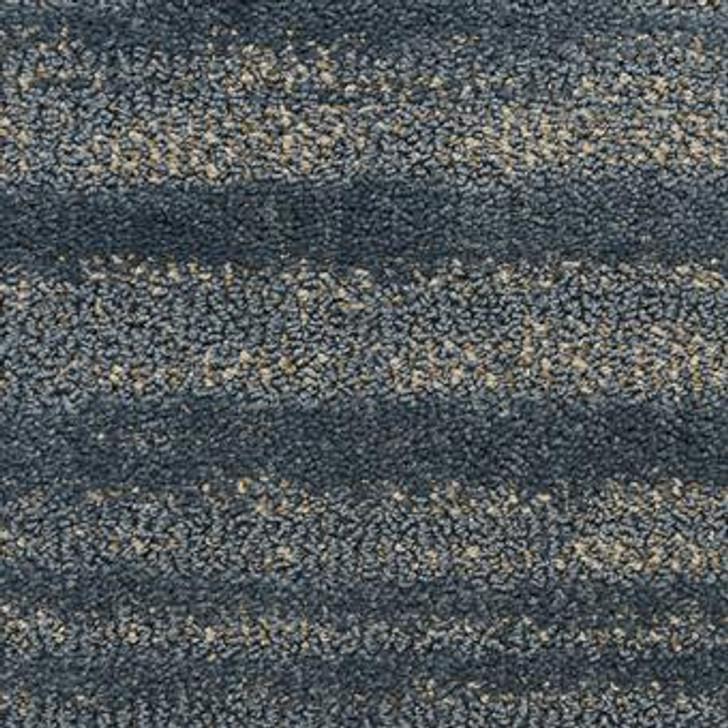 Masland Jive 9567 Nylon Residential Carpet