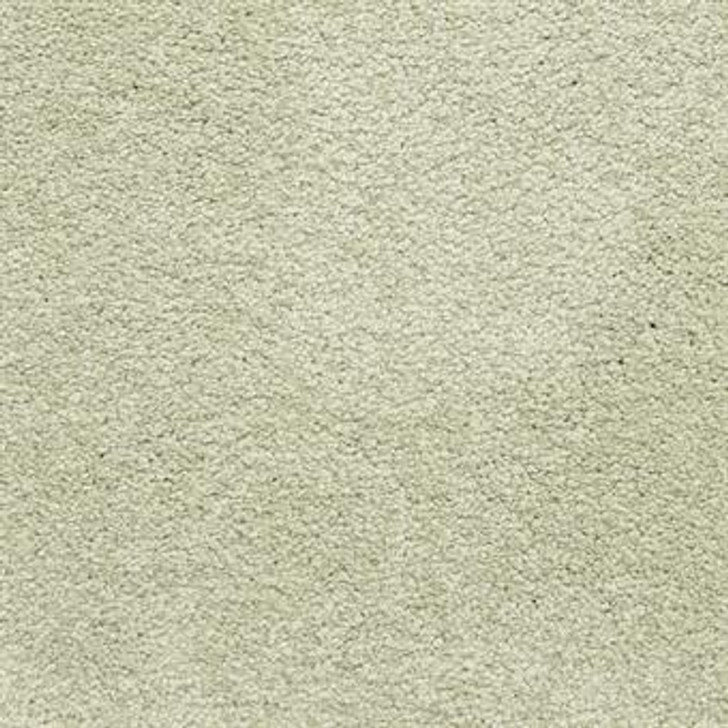 Masland Knockout 9615 StainMaster Residential Carpet