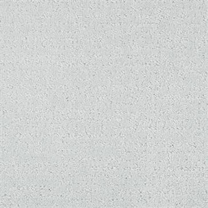 Masland Matisse 9493 StainMaster Residential Carpet