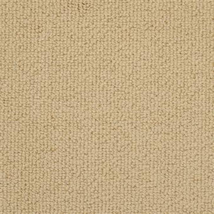 Masland Montego 9398 StainMaster Residential Carpet