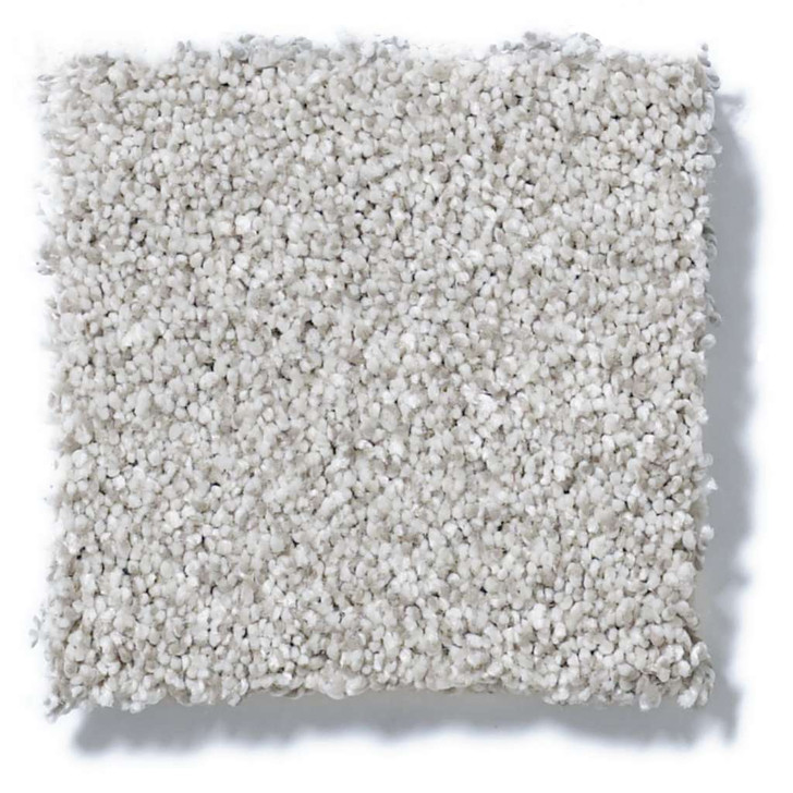 Shaw Platinum Texture Tonal EA579 Residential Carpet