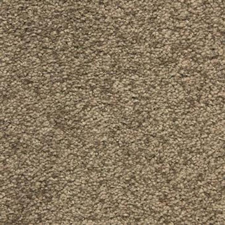 Masland Morgan Bay 9550 Nylon Residential Carpet
