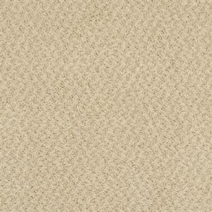 Masland New Hope 9478 StainMaster Residential Carpet