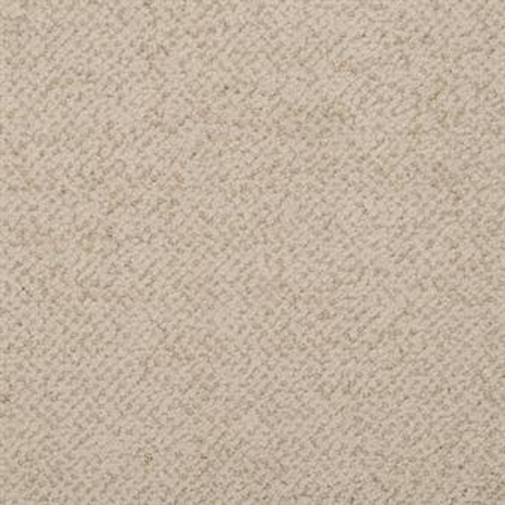 Masland New Twist 9539 StainMaster Residential Carpet