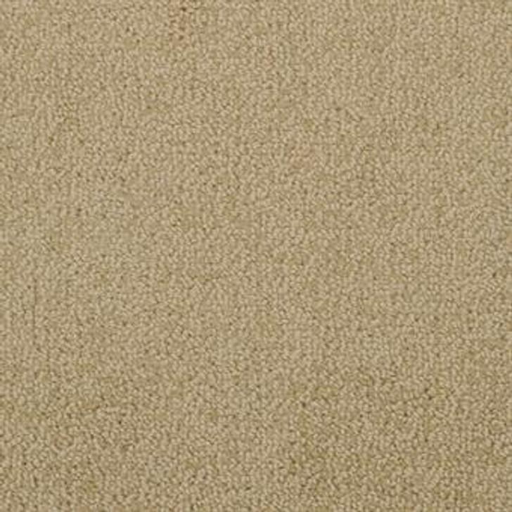 Masland Novellino 9215 Wool Residential Carpet