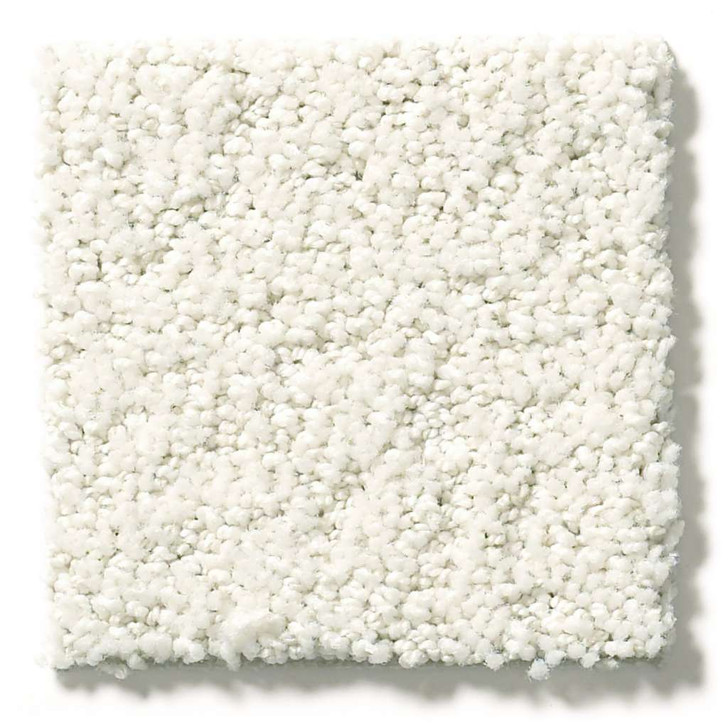 Shaw Simply the Best Values Aerial View 5E041 Residential Carpet