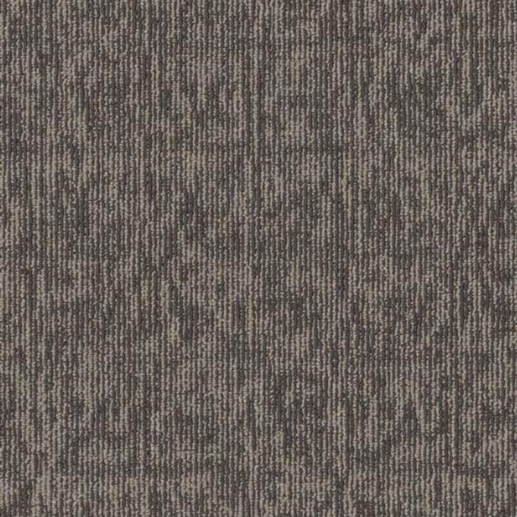 Shaw Philadelphia Fundamental Elemental 54921 Commercial Carpet