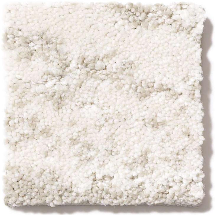Shaw TruAccents Velour EA699 Residential Carpet