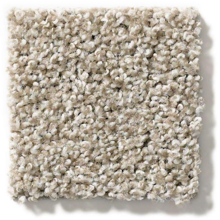 Shaw Poised 5E042 Residential Carpet