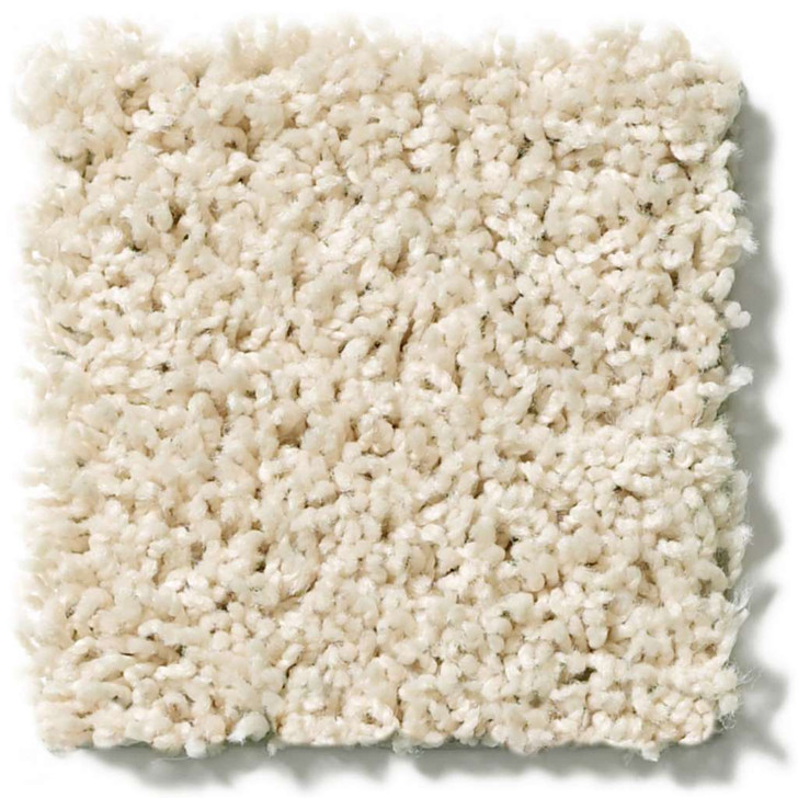 Shaw Everyday Easy 0C052 Residential Carpet