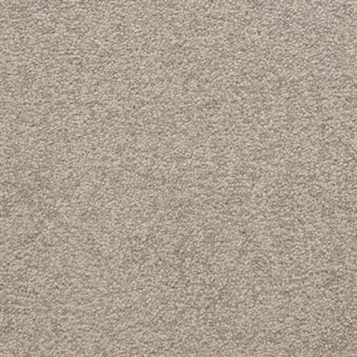 Masland Patriot 9588 StainMaster Residential Carpet