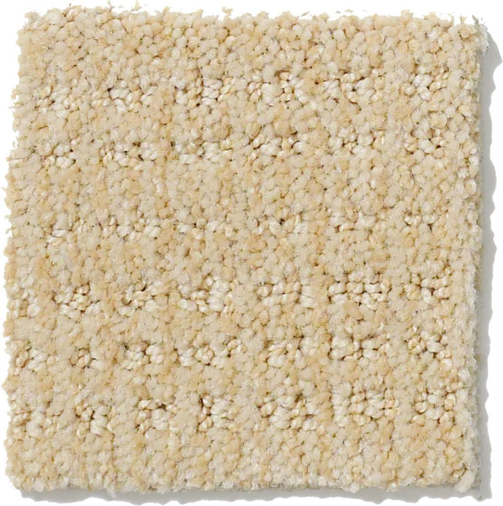 Shaw Step Up EA504 Residential Carpet