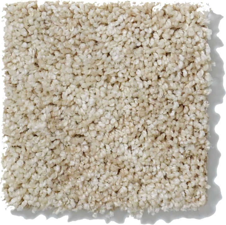 Shaw Starting Place EA499 Residential Carpet
