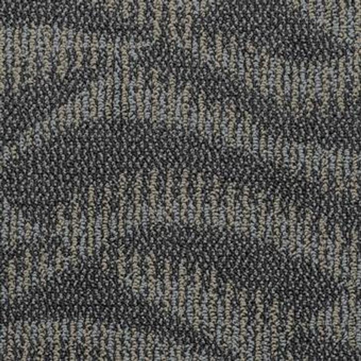 Masland Rhythm 7816 Nylon Residential Carpet