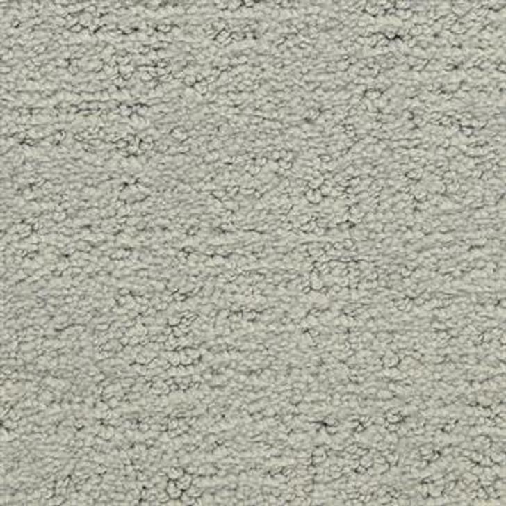 Masland Santa Barbara 9590 StainMaster Residential Carpet