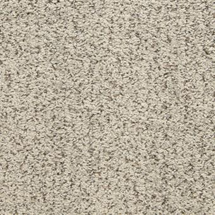 Masland Sea Grass 9556 StainMaster Residential Carpet
