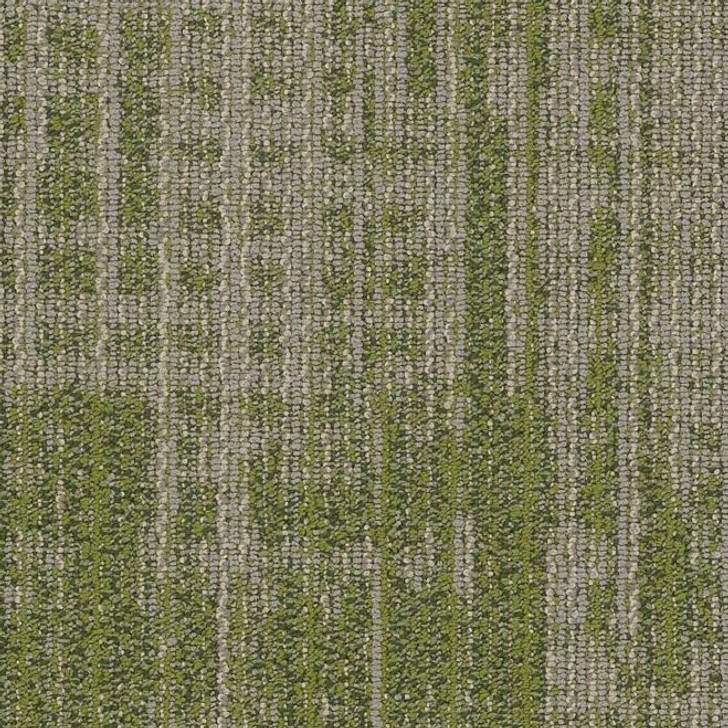 Shaw Philadelphia Mosaic Mix Harmony 54874 Commercial Carpet Tile