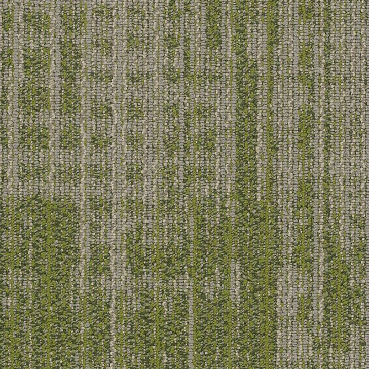 Shaw Philadelphia Mosaic Mix Harmony 54874 Commercial Carpet Tile