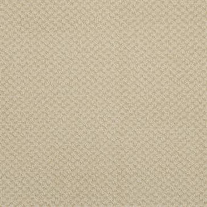Masland Seurat 9440 StainMaster Residential Carpet