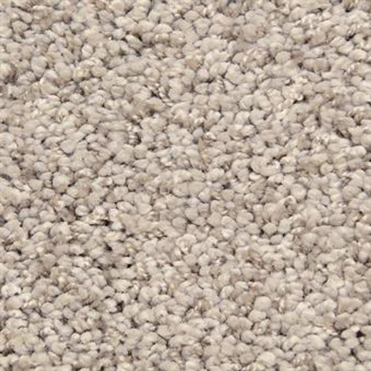 Masland Shangri-La Too 9564 StainMaster Residential Carpet