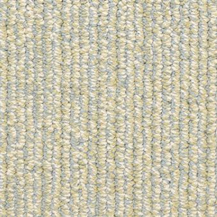 Masland Signature 9629 StainMaster Residential Carpet