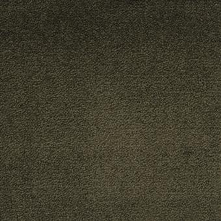 Masland Solid Impact 7105 StainMaster Residential Carpet