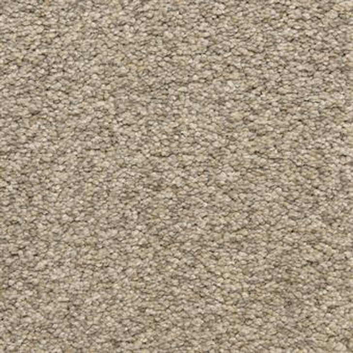 Masland Staccato 9591 StainMaster Residential Carpet