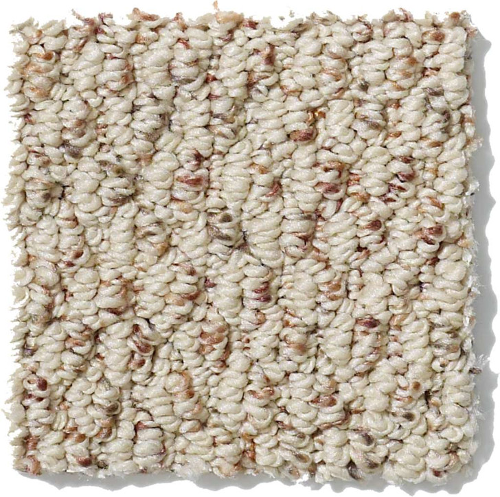 Shaw Anso Originals Great Start EA507 Residential Carpet