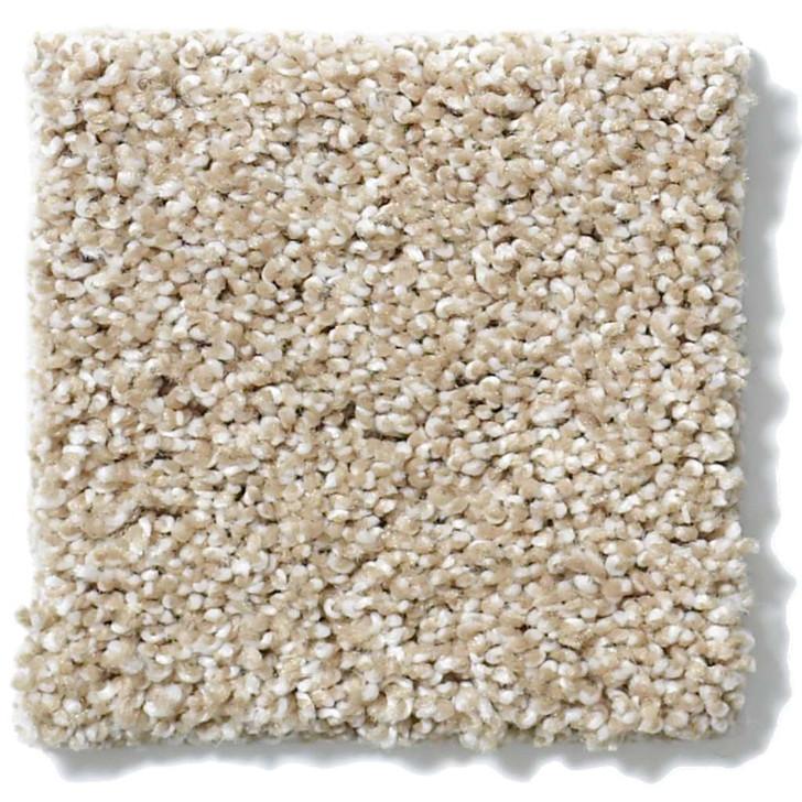 Shaw Anso Originals Inspiring EA508 Residential Carpet