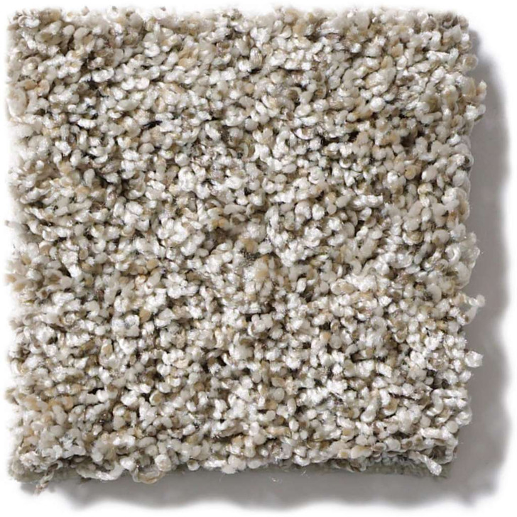 Shaw TruAccents Nature Essence EA692 Residential Carpet