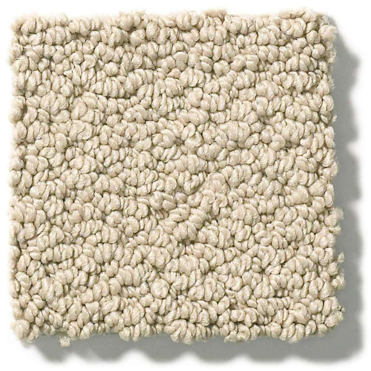 Shaw Foundations Smart Thinking E9725 Residential Carpet