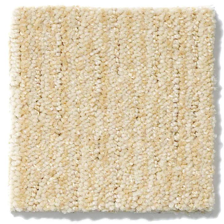 Shaw Anso Originals Speed Zone EA503 Residential Carpet