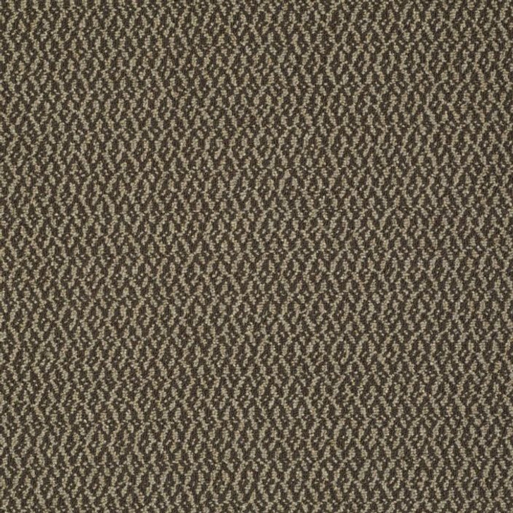Shaw Philadelphia Iconic Collection Bird's Eye 54776 Commercial Carpet