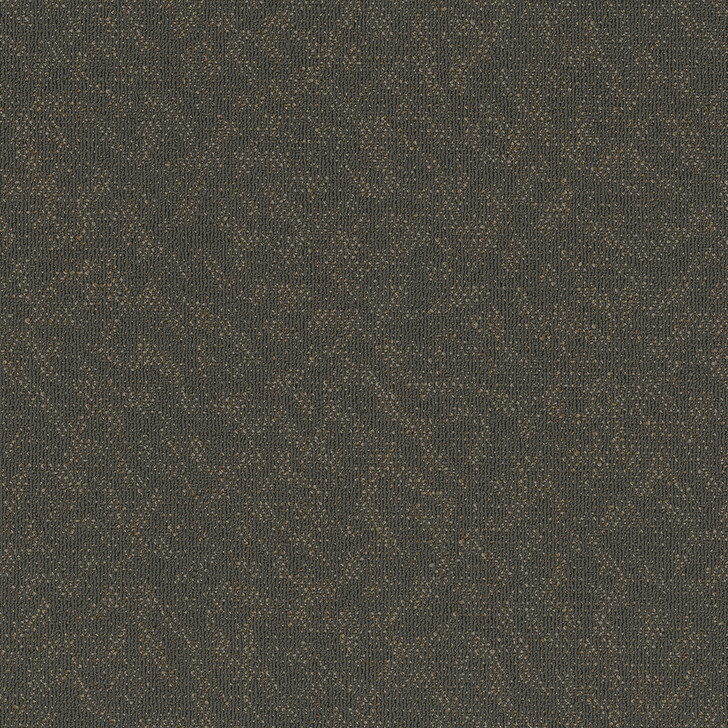 Engineered Floors Animated 7040T Commercial Carpet
