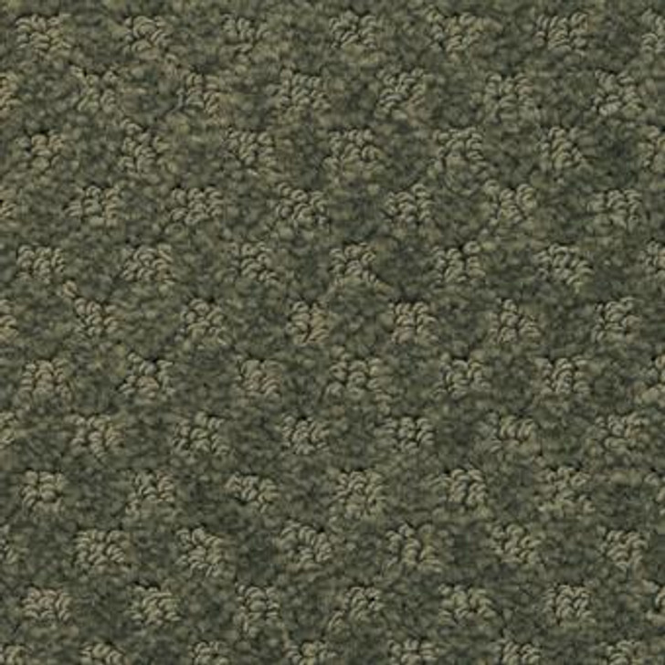 Masland Southport 9540 StainMaster Residential Carpet