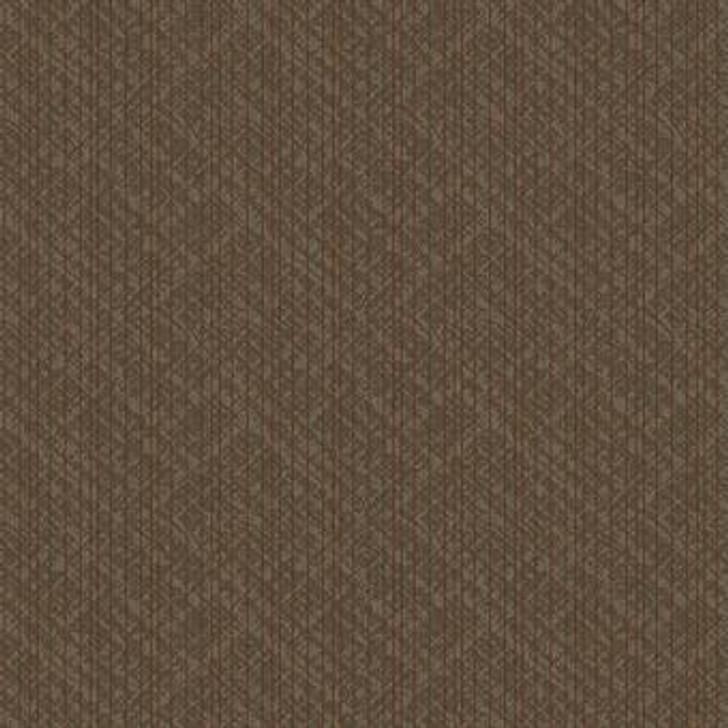 Masland Strength 9607 Nylon Residential Carpet