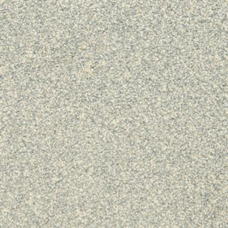 Masland This and That 9557 StainMaster Residential Carpet