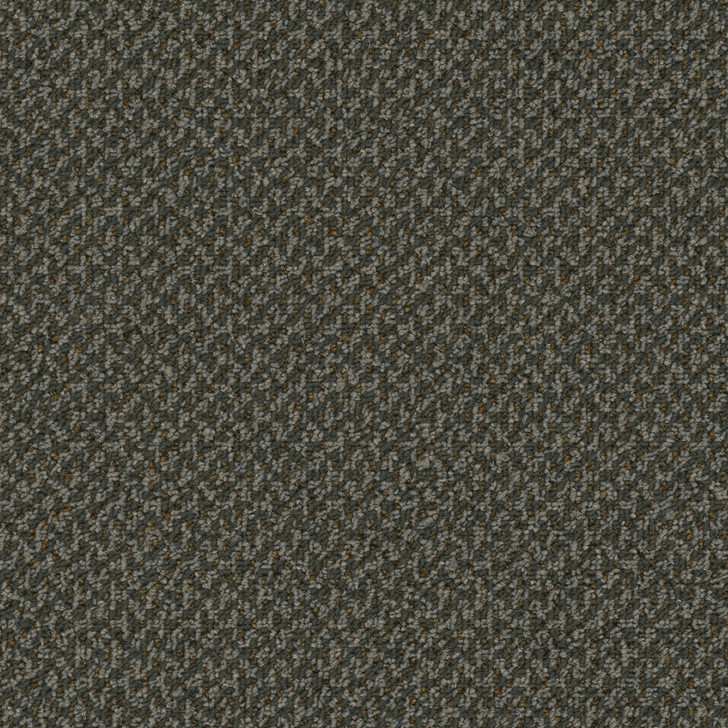 Engineered Floors Outlaw 3053B Commercial Carpet