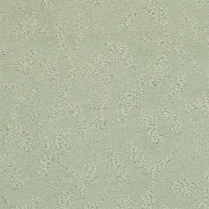 Masland True Luxury 9541 StainMaster Residential Carpet