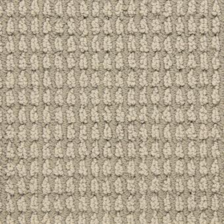 Masland Urban Escape 9595 StainMaster Residential Carpet