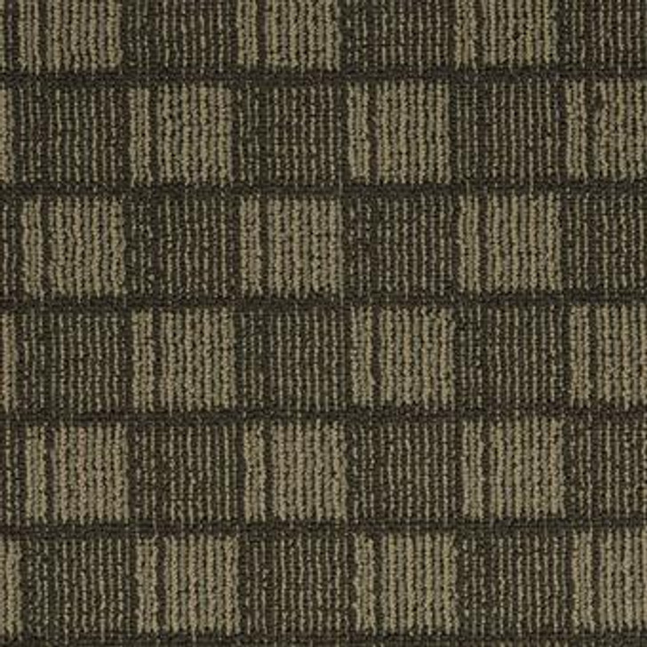 Masland Veritas 9445 Nylon Residential Carpet