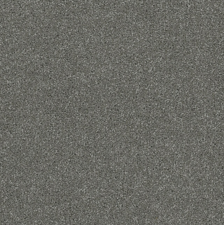 Engineered Floors Pentz Terrain 3050B Commercial Carpet