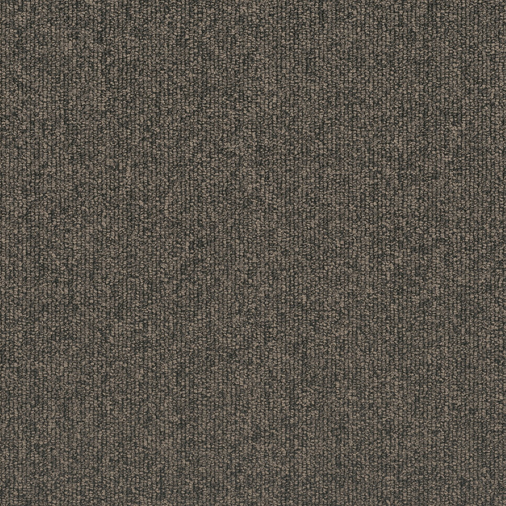Engineered Floors Pentz Vestibule 7267T Commercial Carpet Tile