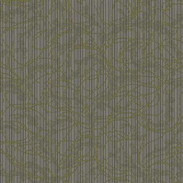 Masland Voltage 9604 Nylon Residential Carpet