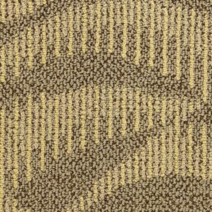 Masland Waltz 7816W Nylon Residential Carpet