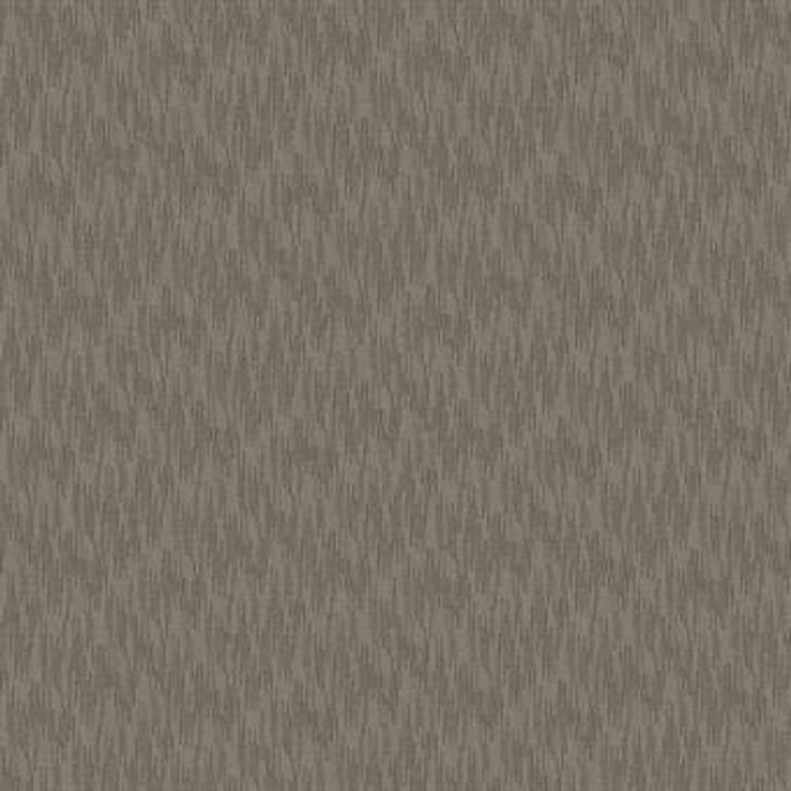 Masland Zealous 9631 Nylon Residential Carpet
