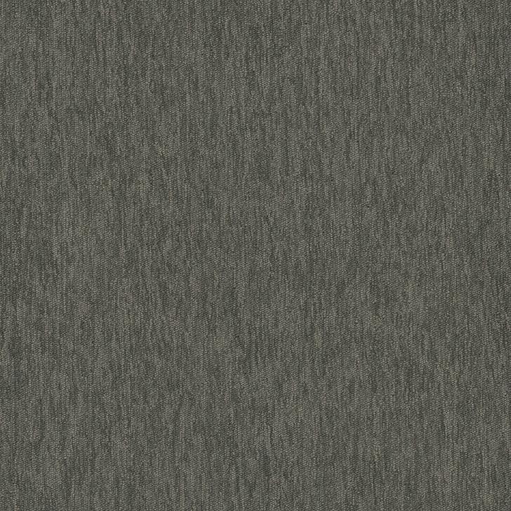 Engineered Floors Pentz Streaming 20 3048B Commercial Carpet