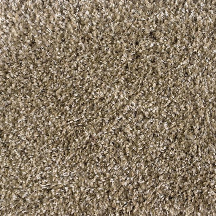 Stanton Avantgarde Shaggy Plush Polypropylene Fiber Residential Carpet